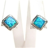 Silver Earrings with Inlay Created Opal
